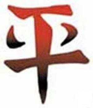asiatische-schriftzeichen-tattoo-29