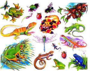tiere-tattoo-vorlagen-107