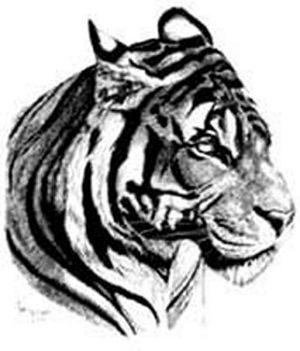 Tiere Tattoo Vorlagen