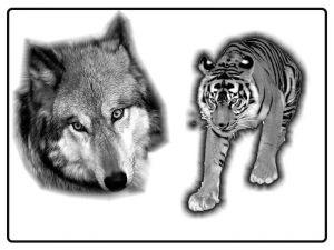 tiere-tattoo-vorlagen-76